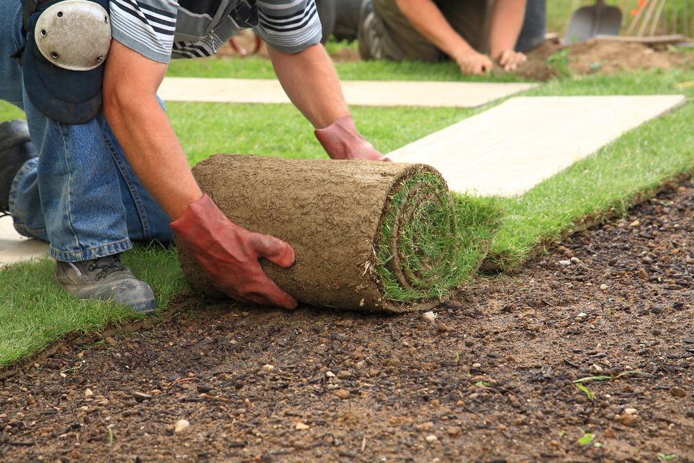 Four Reasons Landscaping is Important | Avon Landscaping