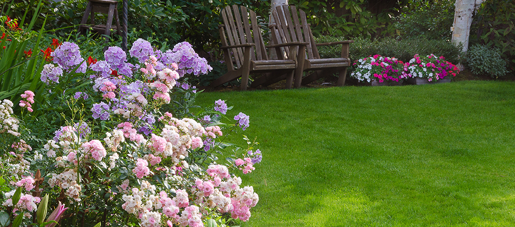 Maintenance | Avon Landscaping