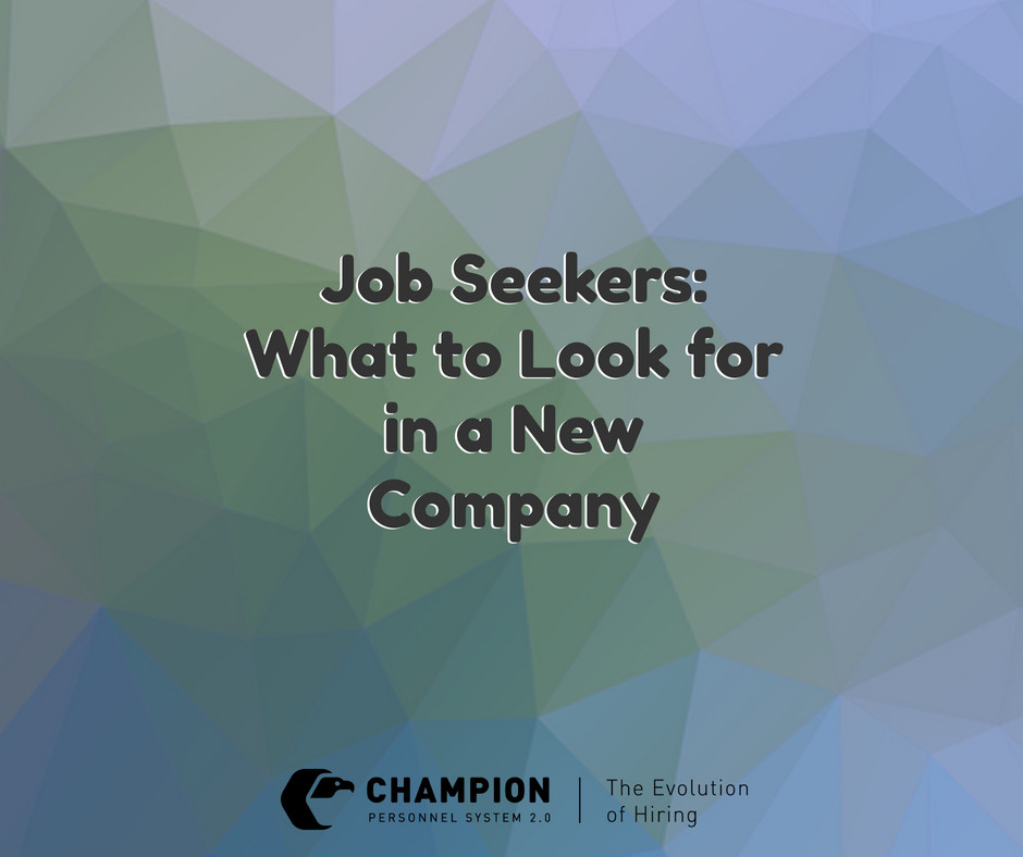 Job Seekers: What to Look for in a New Company