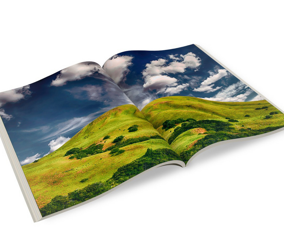 Affordable Brochures for Your Business