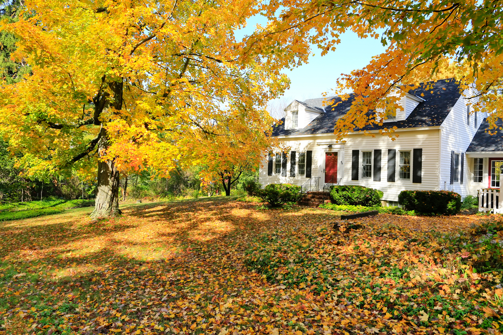 Preparing your HVAC system for Fall in Akron / Canton | Forquer Heating & Cooling