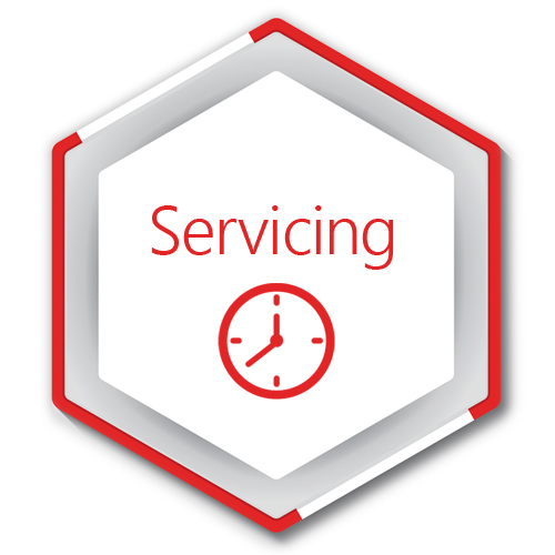 Electropolishing - Servicing