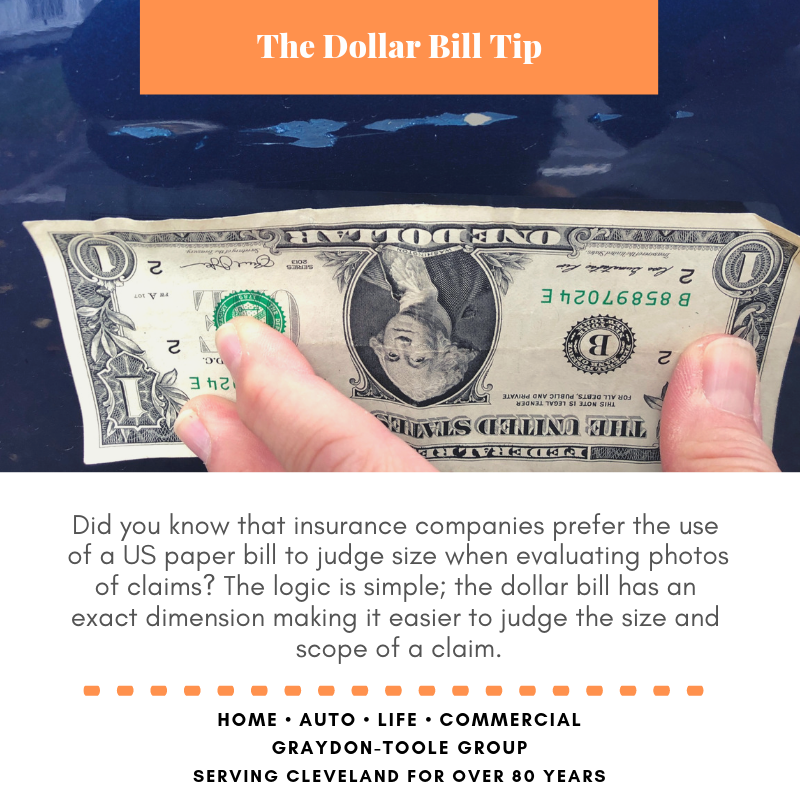 dollar bill tip