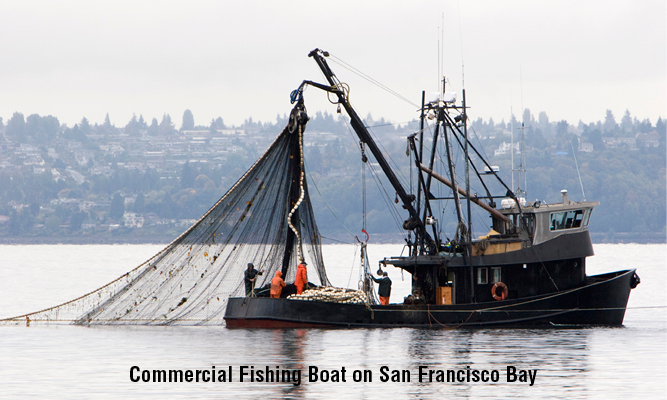 Commercial fishing boat on San Fransisco Bay