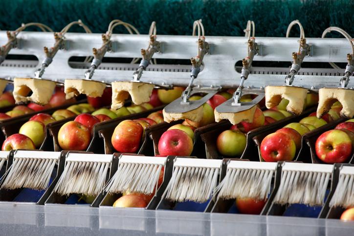 Precision Brush; Food Processing Brushes