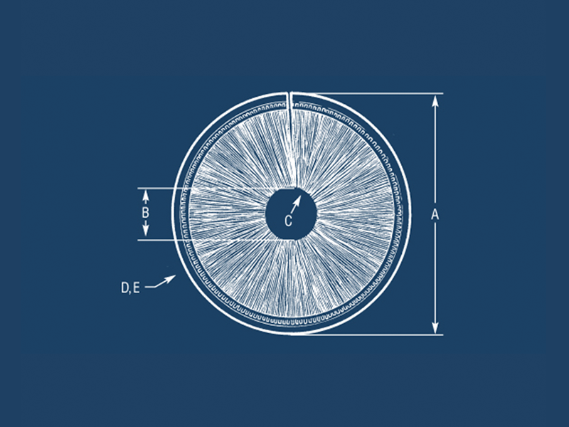 Design an Inside Disk Brush