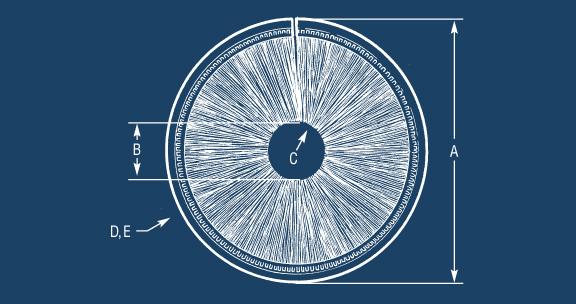 Design a Inside Disk Brush