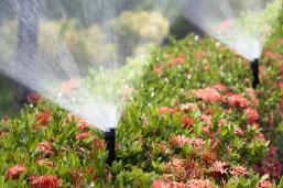 Irrigation System Installs