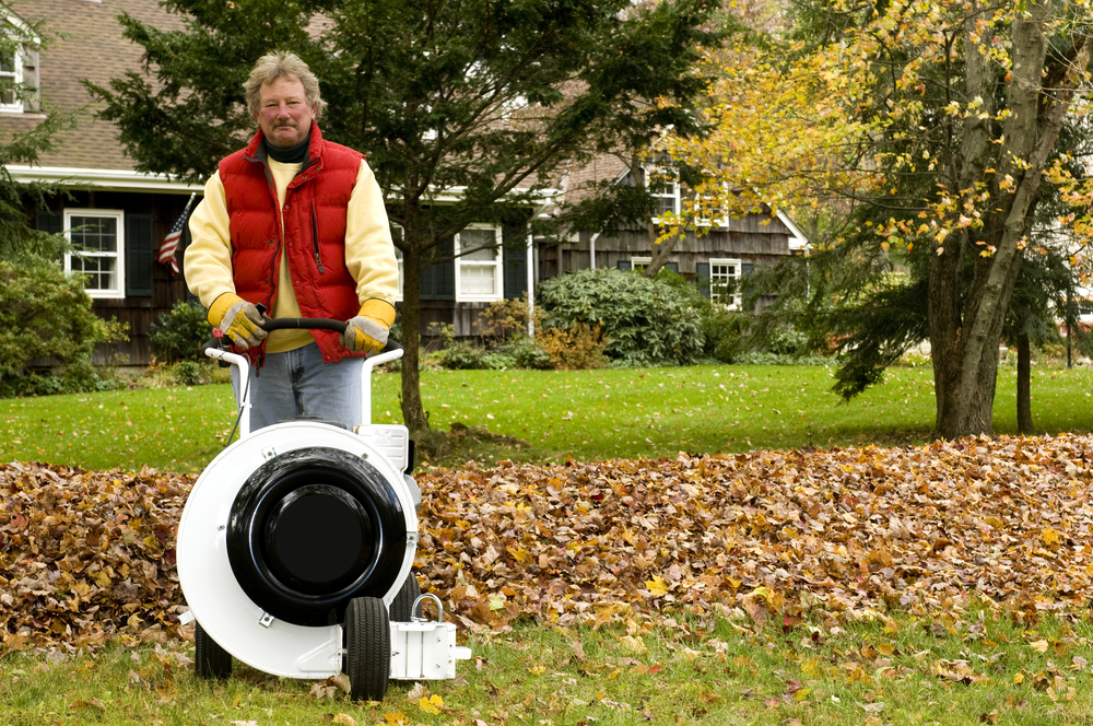Easy Tips to Get Your Lawn Ready for Winter