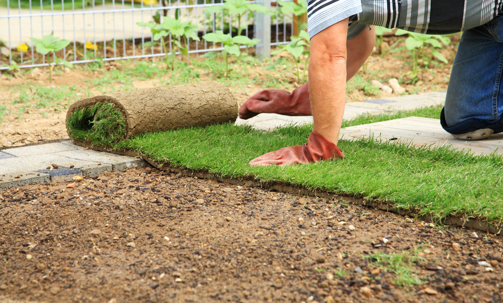 Do You Know the Secret to Being a Rock Star  One Day Landscape Makeovers are Key