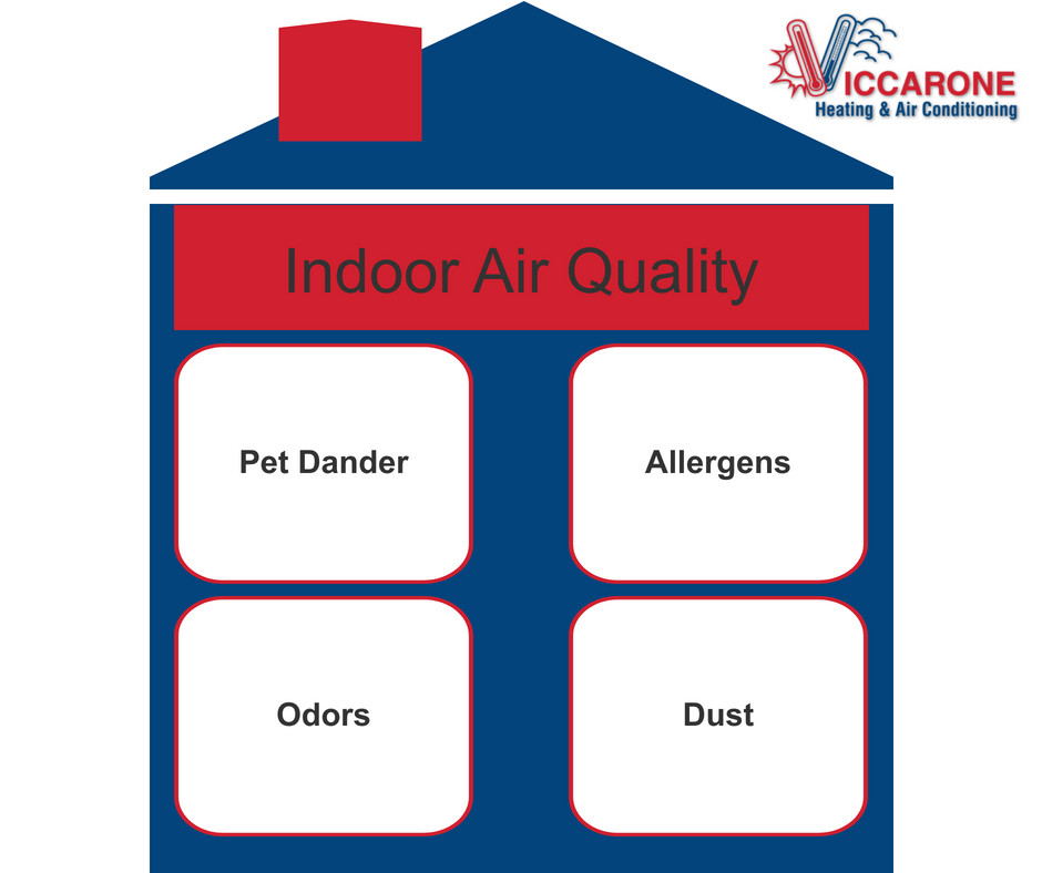 Upgrade the Air Quality in Your Home
