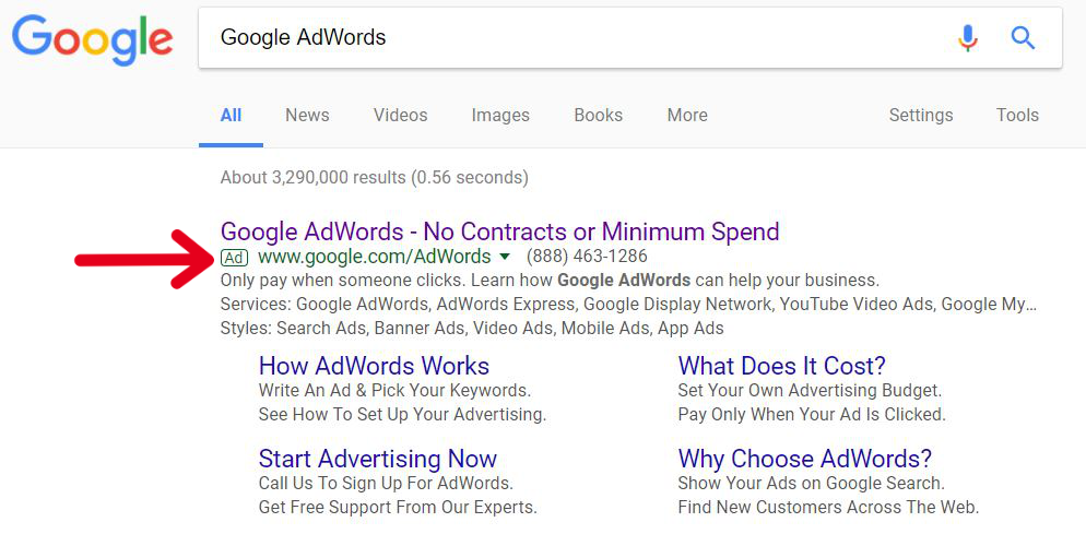 Screenshot of a Google Ad Done by Google AdWords