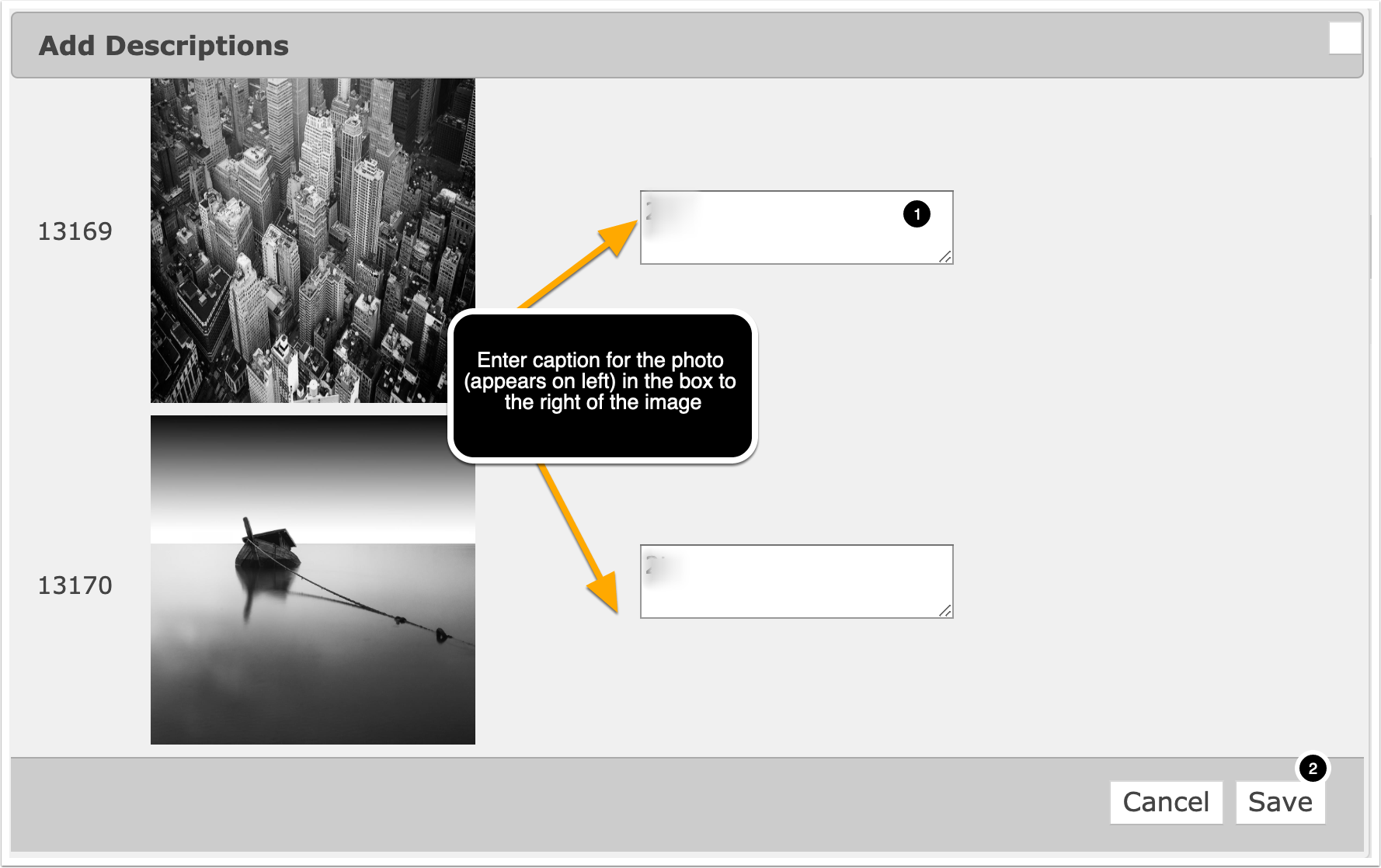 adding photo captions in photogrid