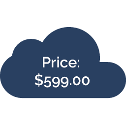 price of blog services at Virterom