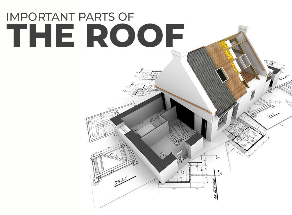 Important Parts of The Roof