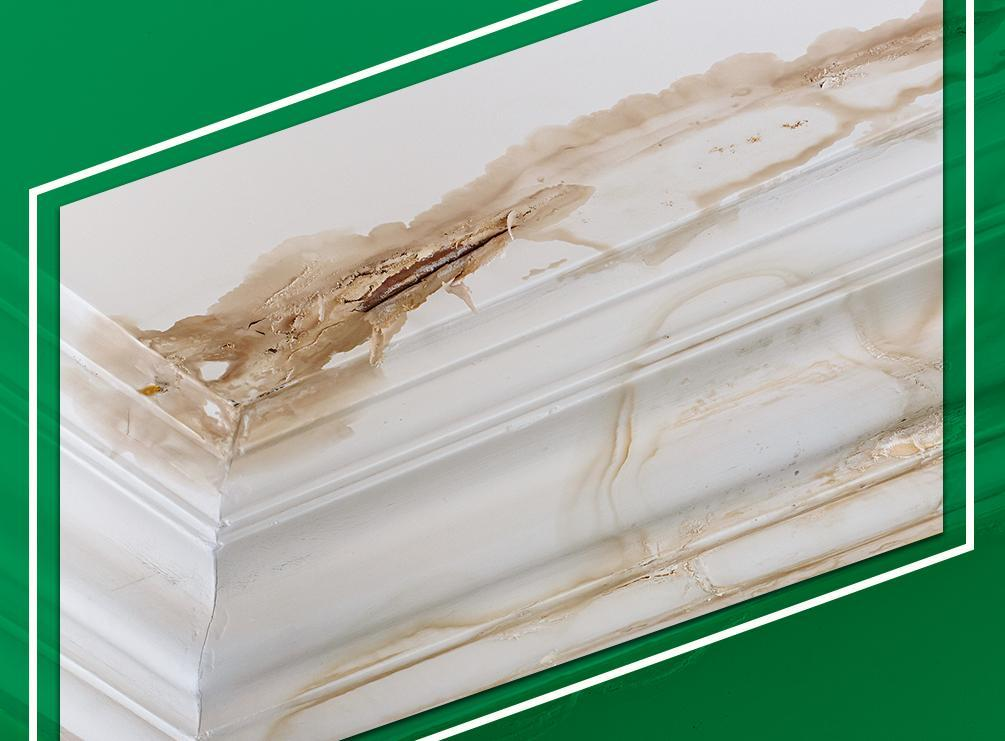 The Common Causes of a Leaky Roof