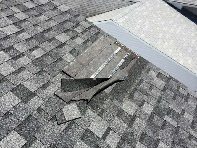 Things That Can Degrade Your Roof | West Side Roofing